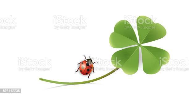 Blank paper sheet with shamrock and ladybug greeting card new years vector id897142206?b=1&k=6&m=897142206&s=612x612&h=pckxpx0bffowmkapj4jh7cq7 rqmthzv ybap25c0nu=