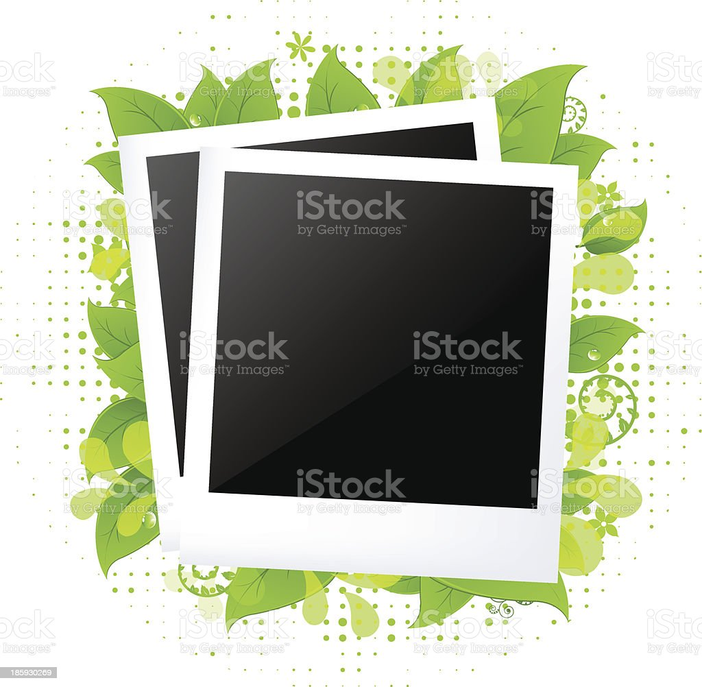 Blank Photos With Leaves royalty-free stock vector art