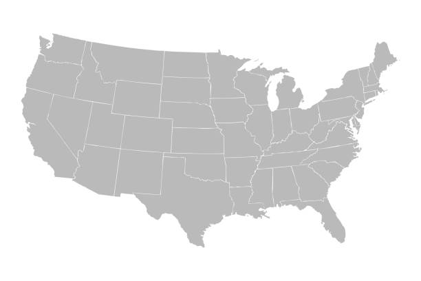 Blank similar USA map isolated on white background. United States of America country. Blank similar USA map isolated on white background. United States of America country. Vector template for website, design, cover, infographics. Graph illustration. vector stock illustrations