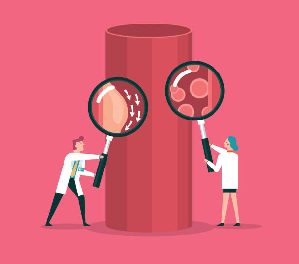 Blood cells and blood vessel stock illustration Team of doctors diagnose human blood Vessel hemoglobin stock illustrations
