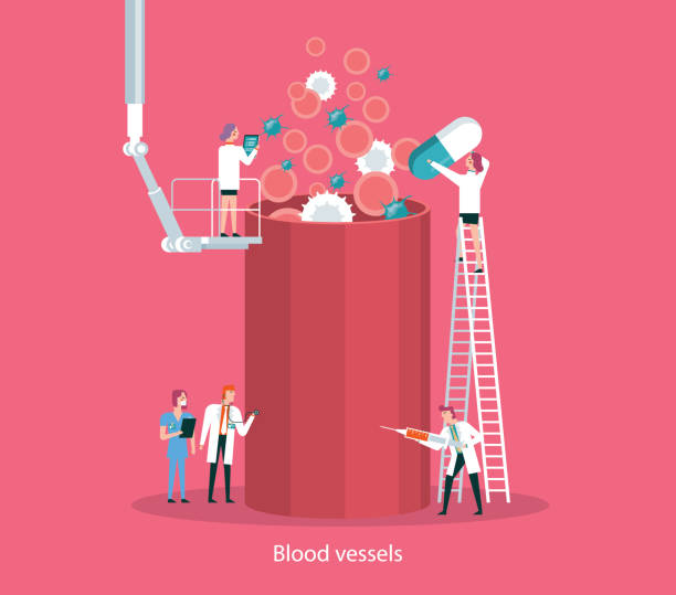 Blood cells and blood vessel Team of doctors diagnose human blood Vessel white blood cell stock illustrations