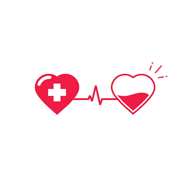 Blood donation vector symbol, two hearts connected with pulse cardiogram vector art illustration