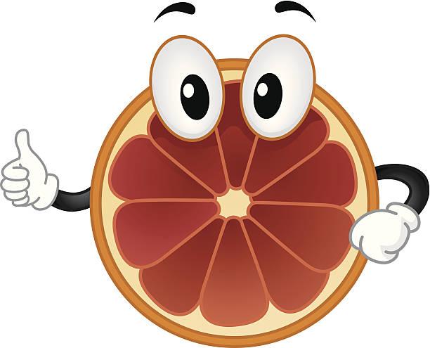 Blood Orange Mascot vector art illustration