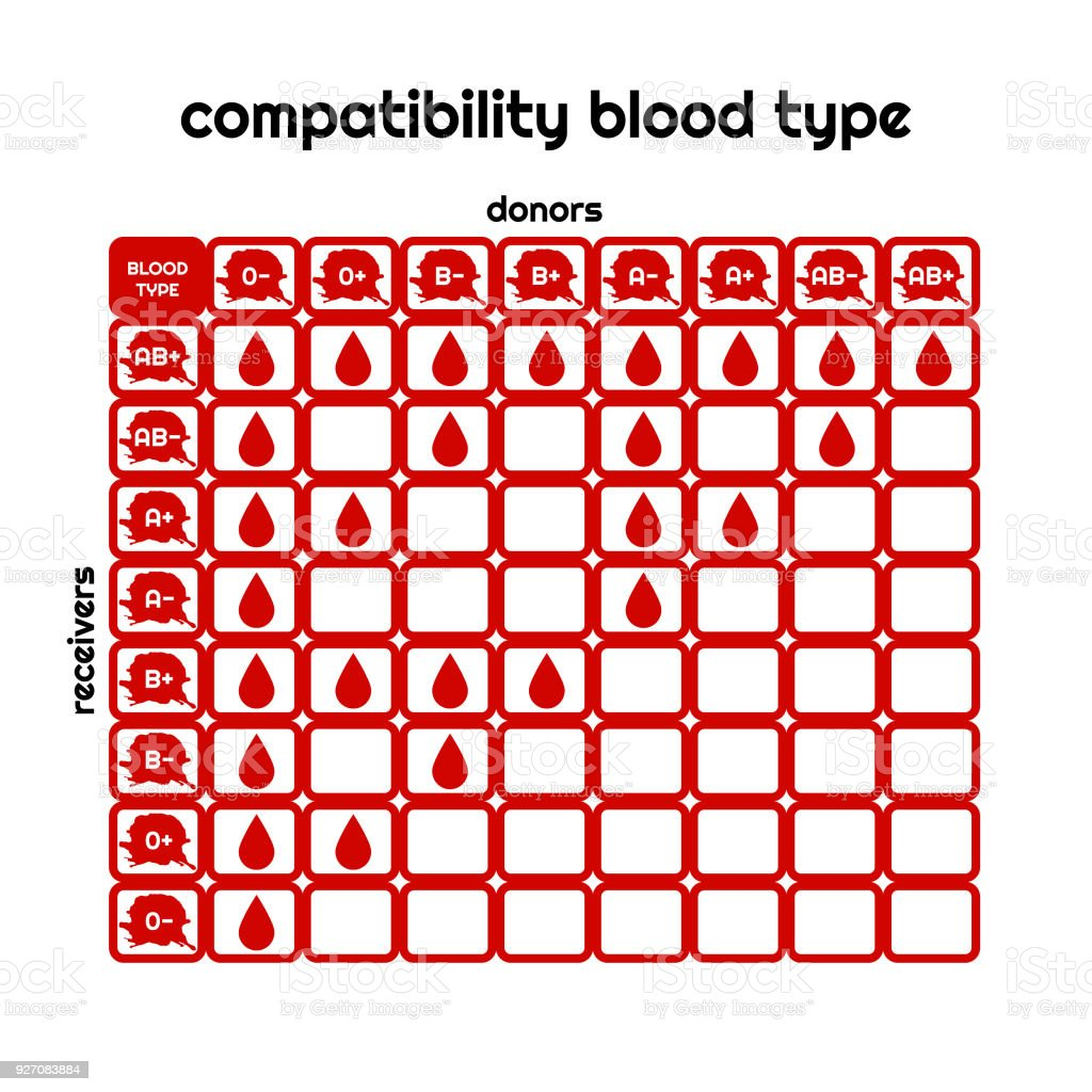 Blood type compatibility table vector set vector art illustration