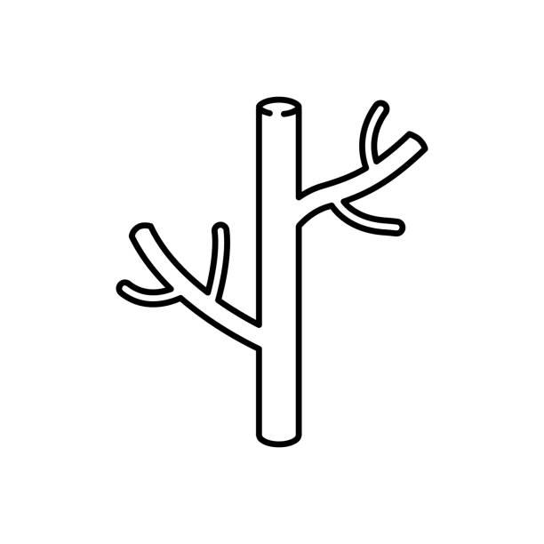 stockillustraties, clipart, cartoons en iconen met bloedvat pictogram, vectorillustratie - bloedvat