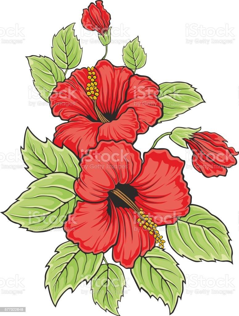 Blooming beautiful hibiscus flower hawaii symbol vector illustration blooming beautiful hibiscus flower hawaii symbol vector illustration royalty free stock vector art izmirmasajfo