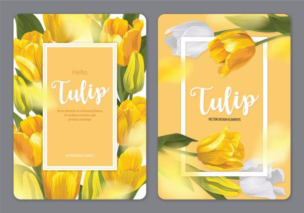 bildbanksillustrationer, clip art samt tecknat material och ikoner med blommande vackra gula tulpan blommor bakgrund mall. - tulpaner