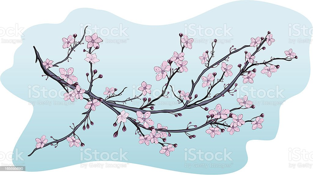 Blooming branch royalty-free blooming branch stock vector art & more images of art and craft