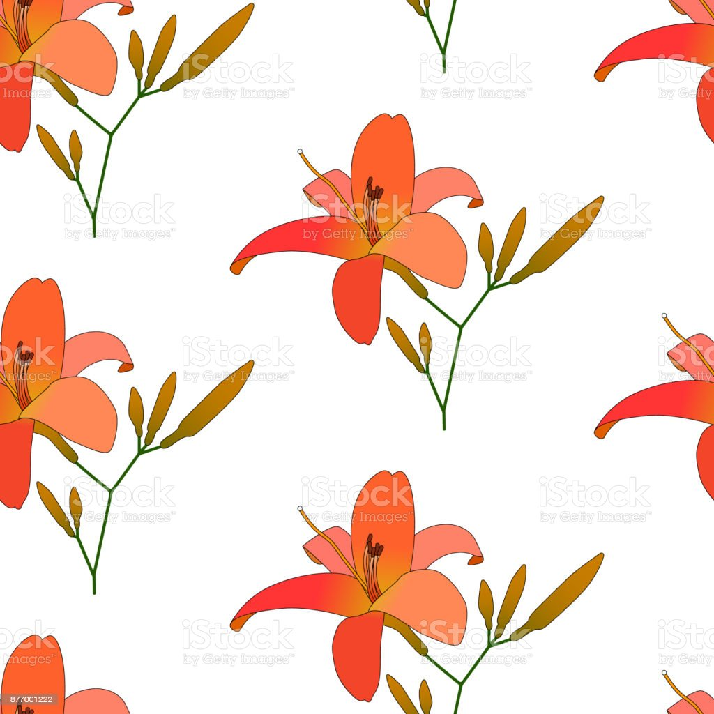 Blooming lilies floral pattern vector vector art illustration