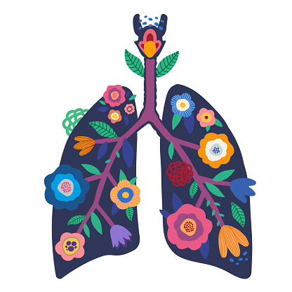 Blooming lungs