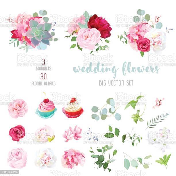 Blooming wedding flowers tasty cupcakes and leaves big vector c vector id831360282?b=1&k=6&m=831360282&s=612x612&h=sctbtxpjsavbcf61ya435dc6xcevn3a7jx6ihjnjv90=
