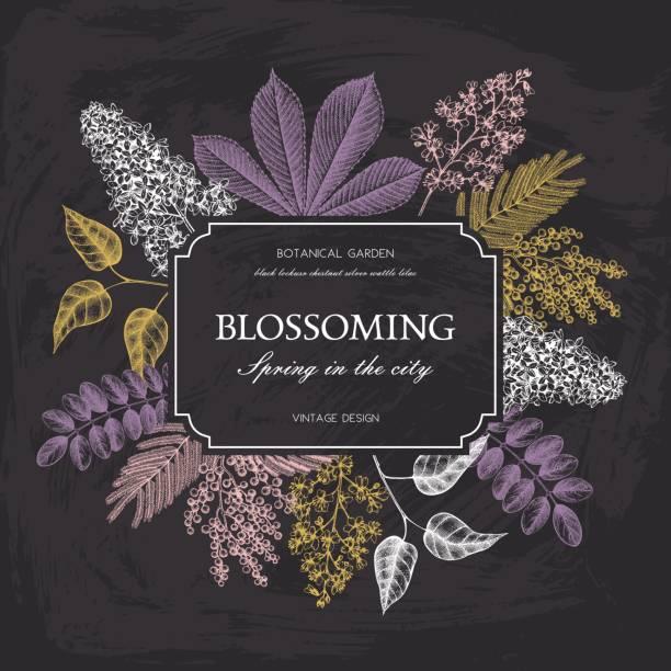 blooming_trees_1 - robinie stock-grafiken, -clipart, -cartoons und -symbole