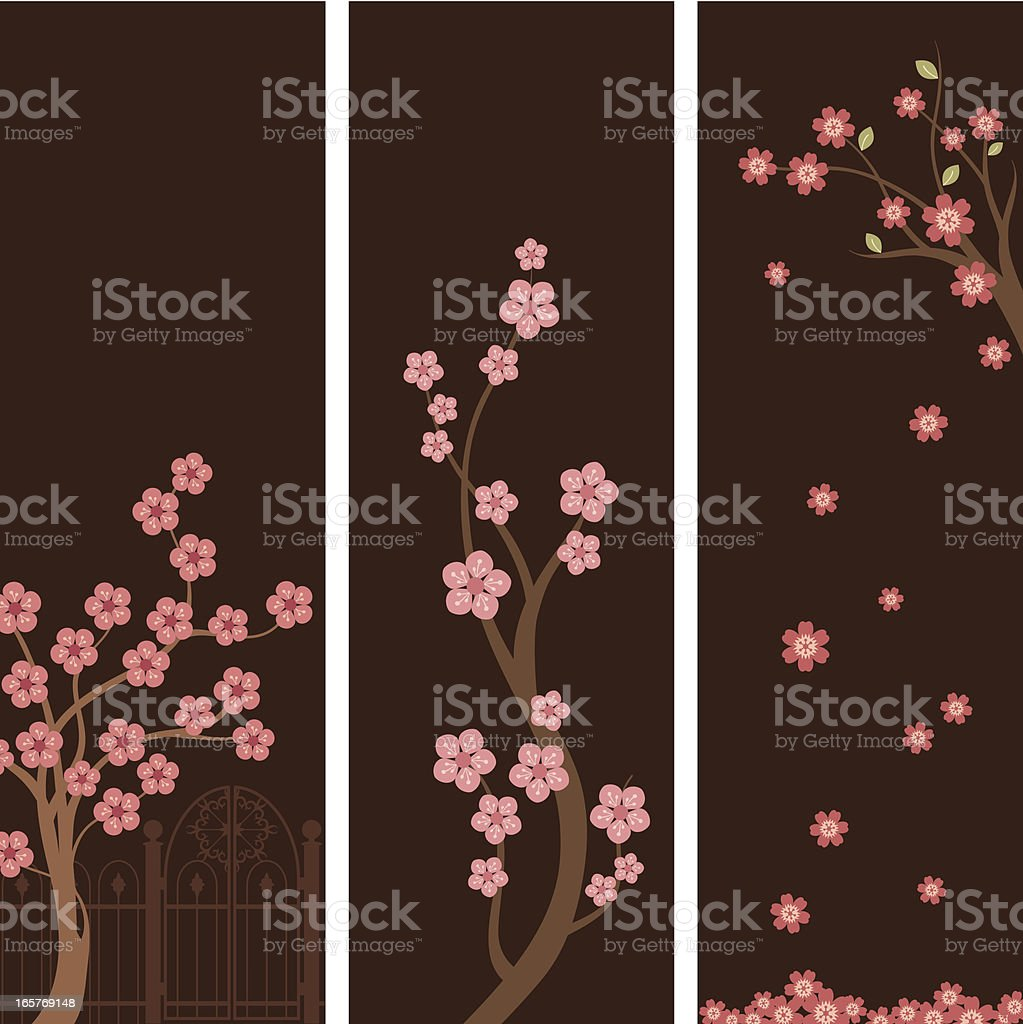 Blossom Banners royalty-free blossom banners stock vector art & more images of arrangement