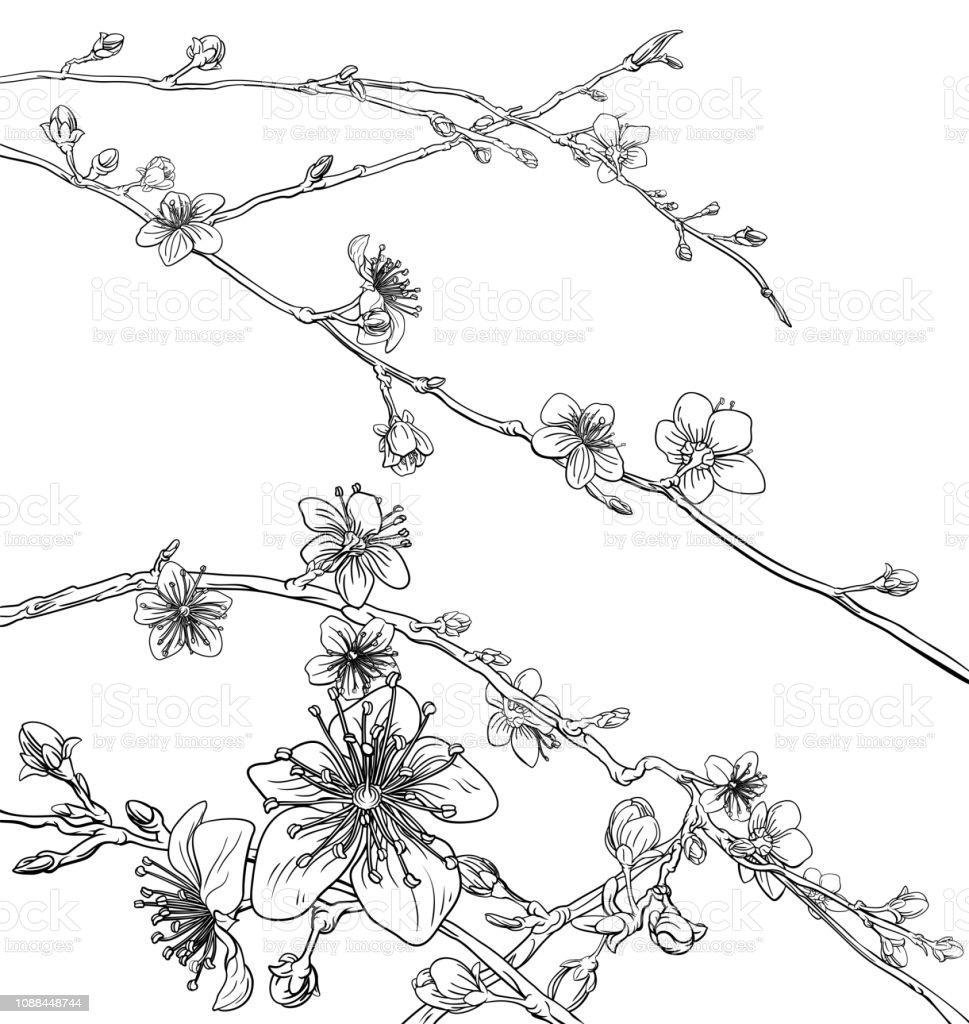 Motif De Fond Fleur Cerisier Fleurs De Pechers Vecteurs Libres De Droits Et Plus D Images Vectorielles De Abstrait Istock