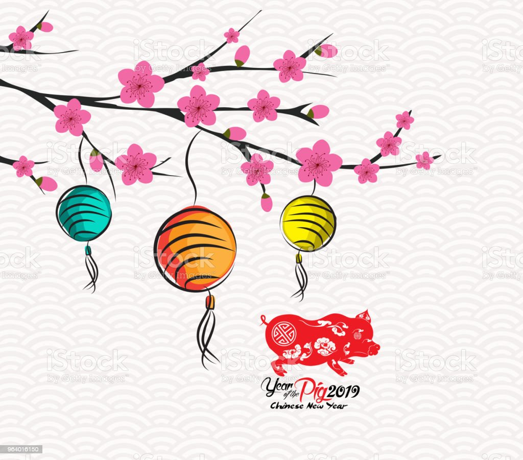 Blossom chinese new year lantern and background. Year of the pig - Royalty-free 2019 stock vector