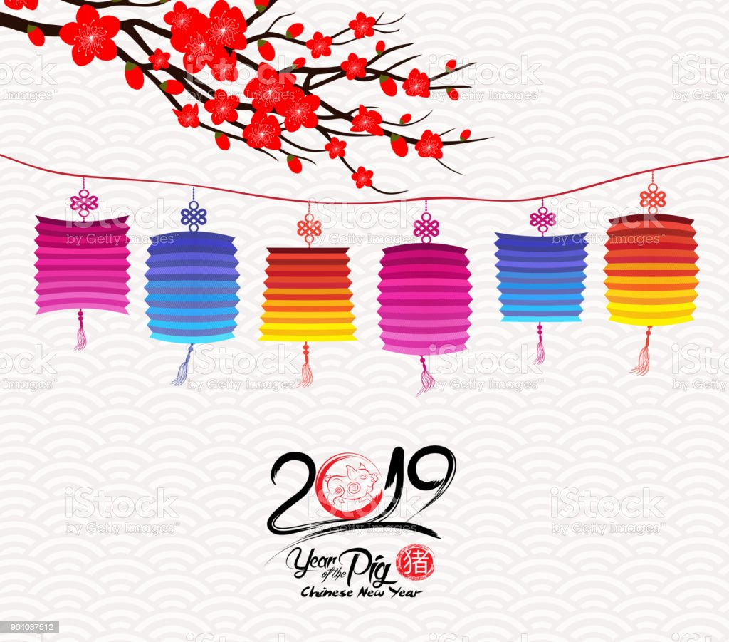 Blossom chinese new year lantern and background. Year of the pig (hieroglyph Pig) - Royalty-free 2019 stock vector
