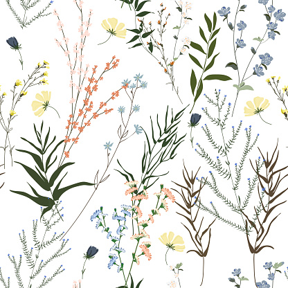 Blossom floral seamless pattern. Blooming botanical motifs scattered random. Trendy colorful vector texture. Fashion, ditsy print, fabric. Hand drawn different wild meadow flowers on white background
