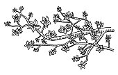 Hand-drawn vector drawing of a Blossom Twig. Black-and-White sketch on a transparent background (.eps-file). Included files are EPS (v10) and Hi-Res JPG.