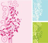 Variable colored backgrounds with floral patterns.