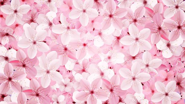 Blossoming pink sakura flowers background. Beautiful print vector art illustration