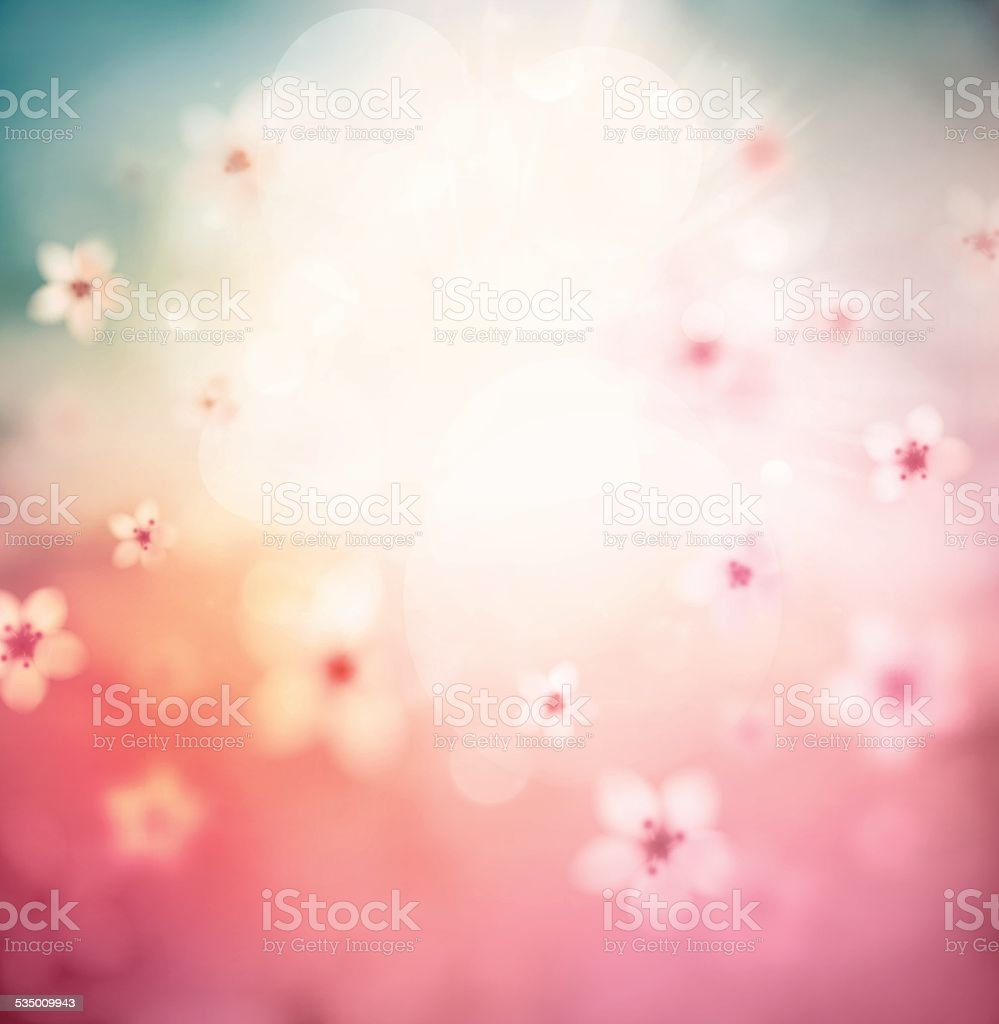 Blossoming Sacura vector art illustration