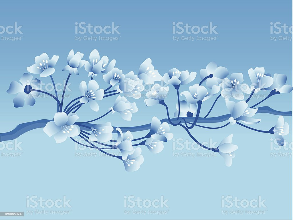 Blossoms – Vektorgrafik