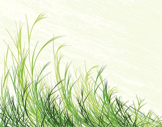 吹き芝生 - 草原点のイラスト素材/クリップアート素材/マンガ素材/アイコン素材