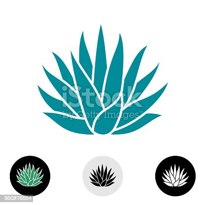 Agave plant vector silhouette. Blue agave cactus illustration. Tequila symbol.