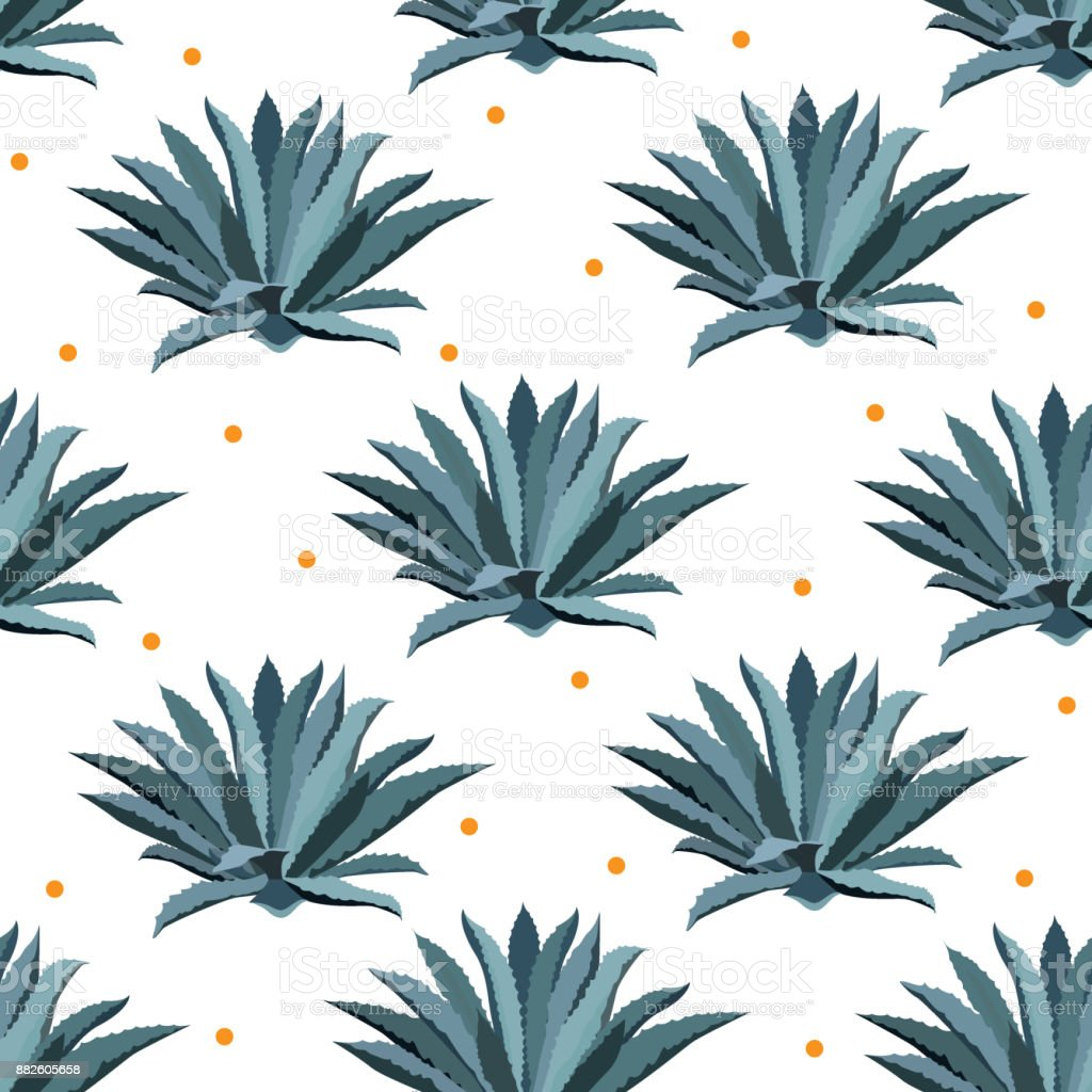 Blue agave vector seamless pattern. Background for tequila packs, superfood with agave syrop, and other. Succulent, cactus wallpapers. vector art illustration
