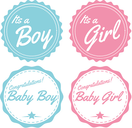 blue and pink boy and girl baby labels