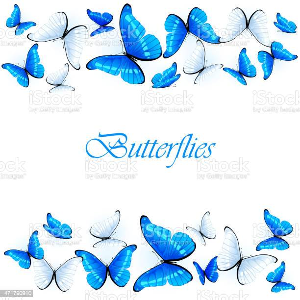 Blue and white butterflies vector id471790910?b=1&k=6&m=471790910&s=612x612&h=dhsf2 moipqmxybdwg dfaonhfsjyd plw4dc6cxymc=