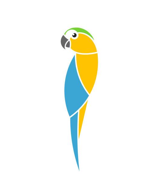 ilustrações de stock, clip art, desenhos animados e ícones de blue and yellow macaw parrot. tropical bird. isolated parrot on white background - arara