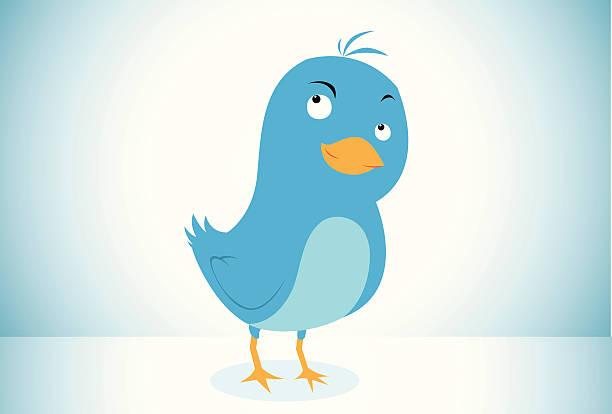 blue bird icon - whatsapp stock illustrations, clip art, cartoons, & icons
