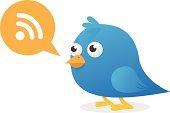 Blue Bird Wifi