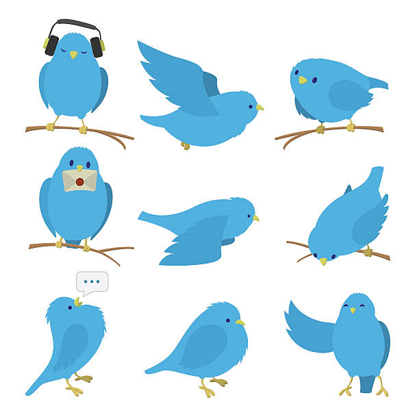 Blue birds set vector art illustration