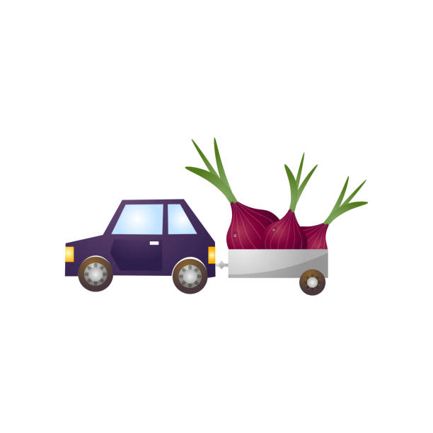 Blue car with metal trailer, fresh farm onion Blue car with metal trailer, fresh farm onion for global market. Cartoon style. Vector illustration on white background crucifers stock illustrations