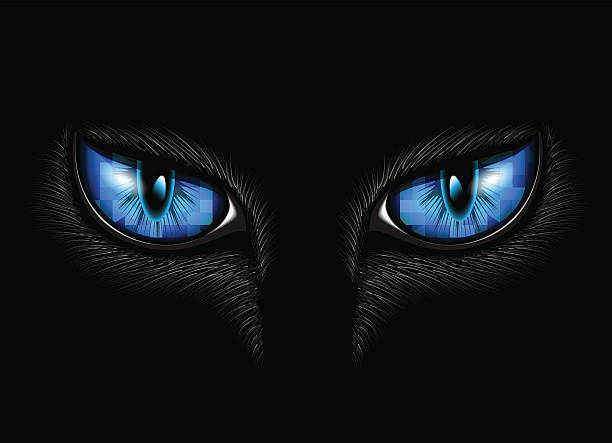 blue cat's eyes Two blue cat eyes on black background animal eye stock illustrations