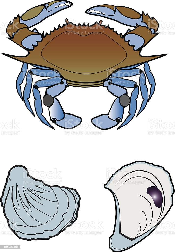 blue crab and oysters royalty-free stock vector art