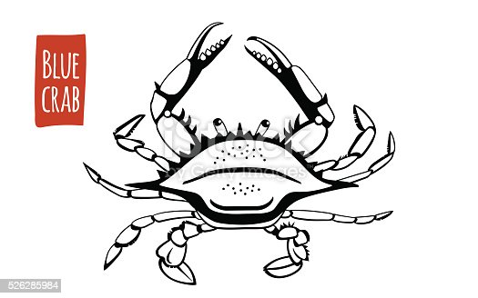 Blue crab vector cartoon illustration stock vector art for Md fishing license cost