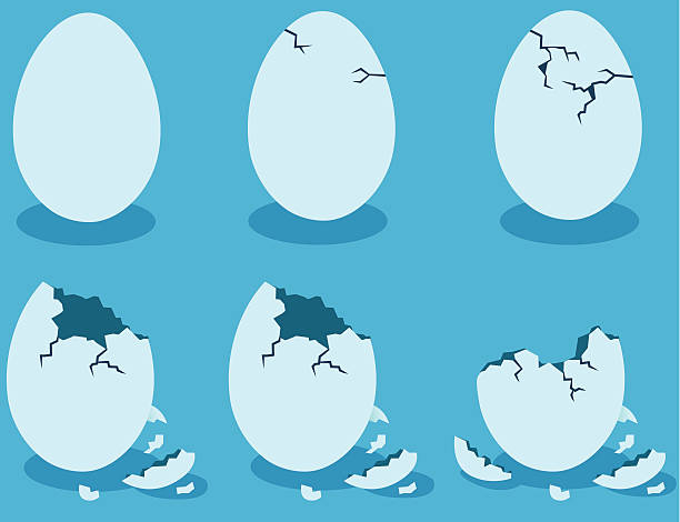 stockillustraties, clipart, cartoons en iconen met blue eggshells - egg