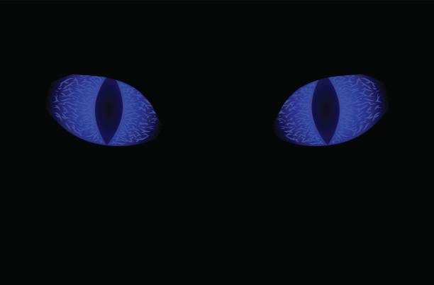 blue eye on black background. scary animal sight - dragon eye stock illustrations, clip art, cartoons, & icons
