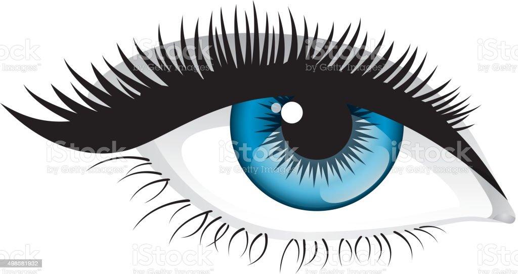 long eyelashes clip art, vector images & illustrations - istock
