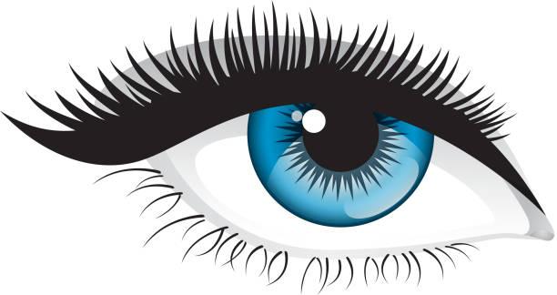 Eyelash Illustrations, Royalty-Free Vector Graphics & Clip ...