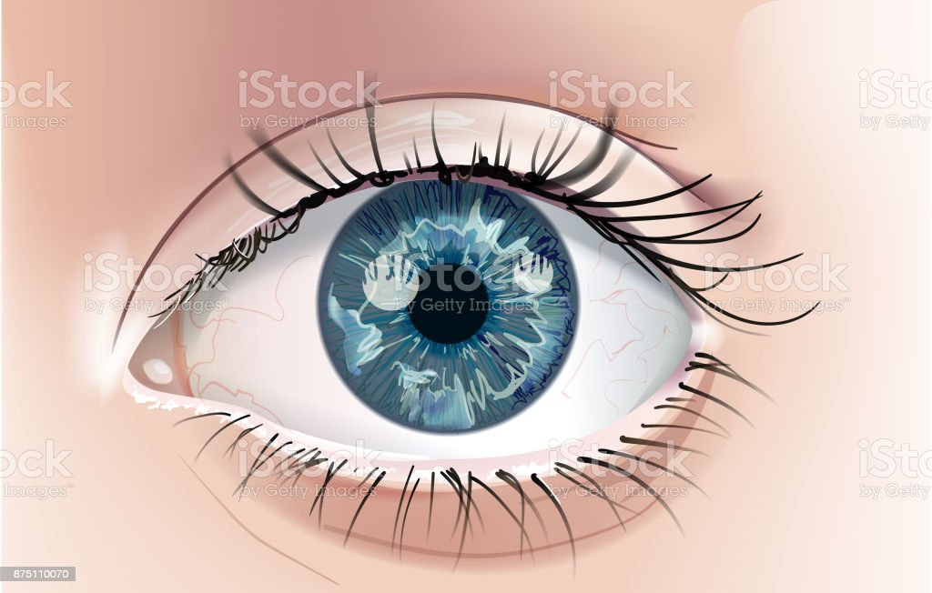 Blue Eye vector art illustration