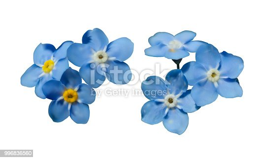 istock Blue forget me not spring flowers. Decorative elements vector set 996836560