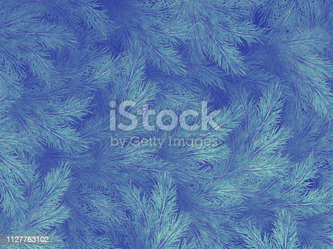 Blue green branches of a fur-tree, spruce or pine with copyspace. EPS 10 vector file