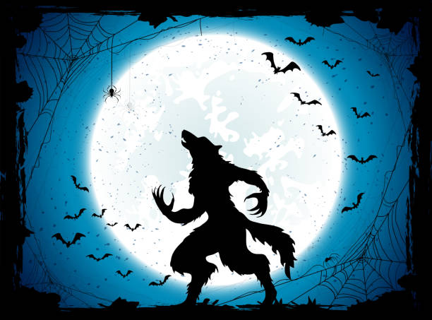 Blue Halloween background with bats and werewolf Dark Halloween background with Moon on blue sky and werewolf, grunge decoration with cobweb, spiders and bats, illustration. werewolf stock illustrations