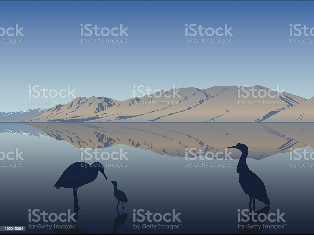 Blue Heron Family vector art illustration