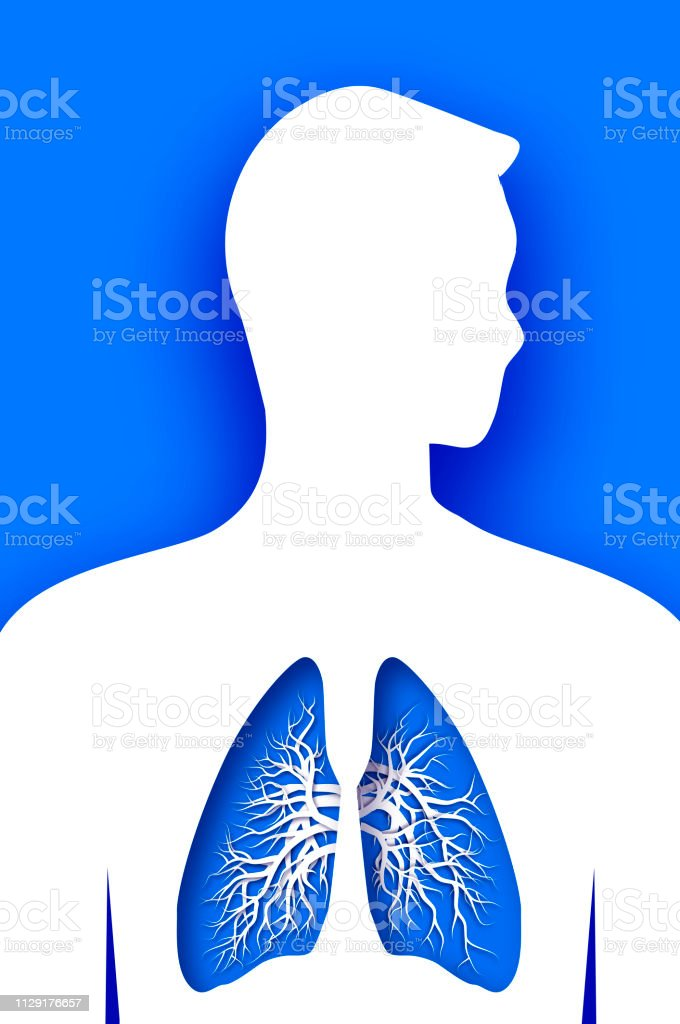 Blue Human Lungs World Health Day Medicine Idea With Paper Cut