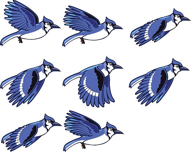Blue Jay Bird Flying Animation Sprite vector art illustration